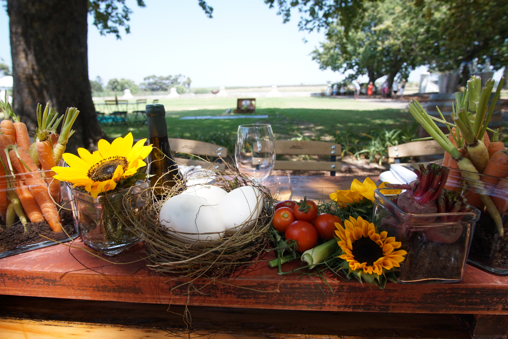 Harvest Lunch Table